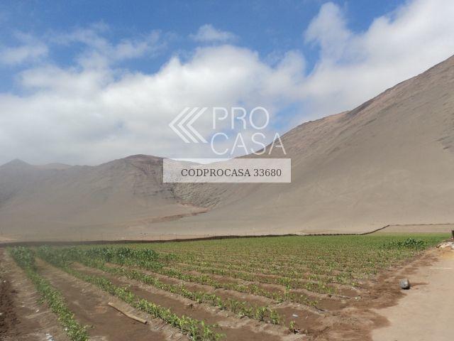 venta de sitio ruta 302 en arica